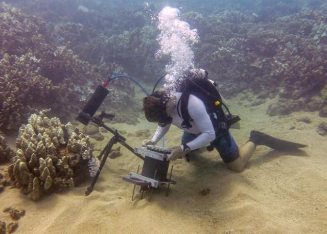 Ученые собрали и протестировали подводный микроскоп