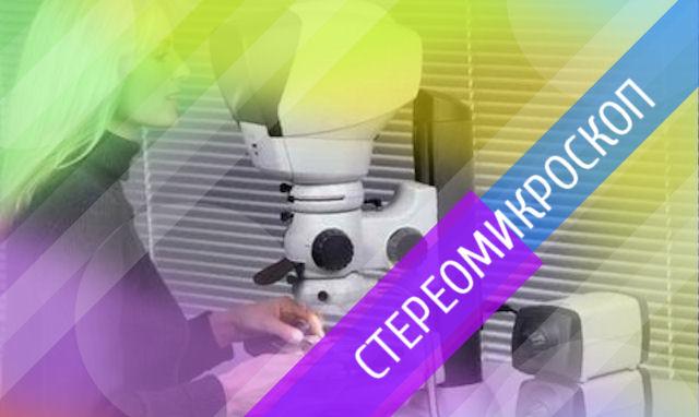 Что видно под стереомикроскопом