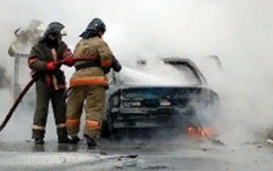 В пойме Десны в Брянске сгорела машина