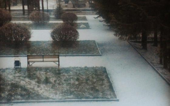 В Брянск пришла зима