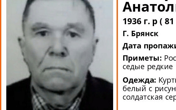 Пропавшего в Брянске пенсионера нашли живым спустя два дня