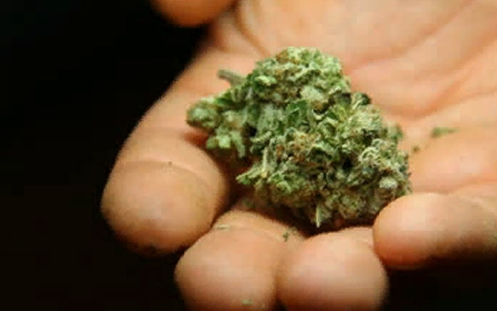 Житель Стародуба угостил оперативника на задании марихуаной