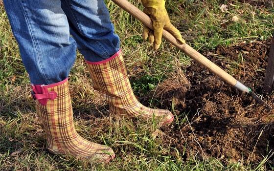 В Мглинском районе женщина пригрозила убить главу села лопатой