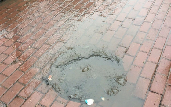 Канализация заливает тротуар в центре Брянска