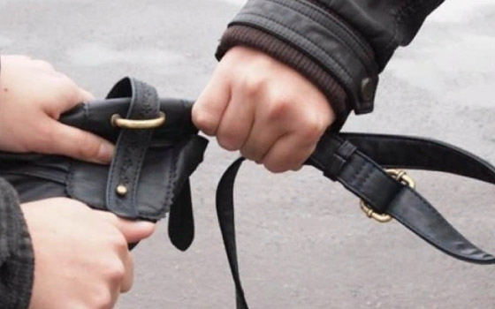 Брянец отомстил девушке, украв ее сумку