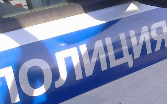 Полиция ищет очевидцев «пьяного» ДТП под Брянском