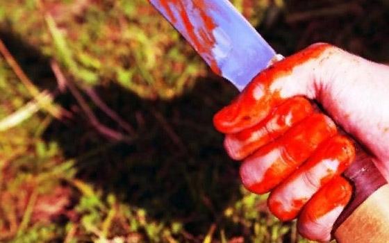 Пьяный казах в лесу зарезал агрессивного жителя Фокино