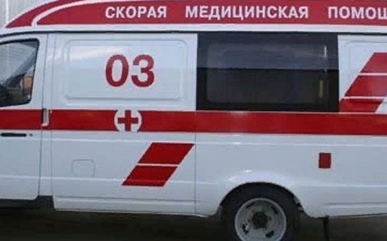 Под Почепом внедорожник врезался в дерево и сбил пенсионерку – женщина в тяжелом состоянии