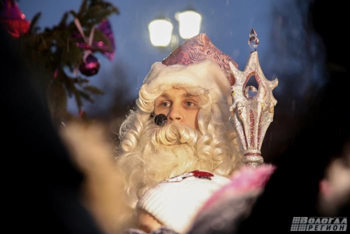 Актриса Мария Кожевникова зажгла новогоднюю елку в Вологде